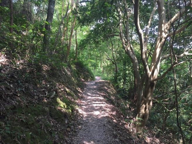 Hiking 18.10.15 Wu Kau Tang (4).JPG
