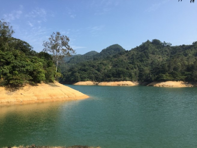 Hiking 1.1.16 Shing Mun (5)