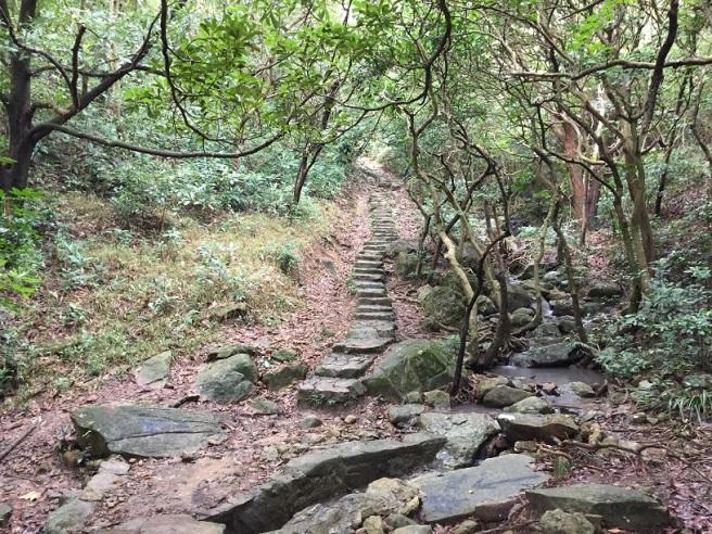 Hiking 17.1.16  Ng Fai Tin (10)