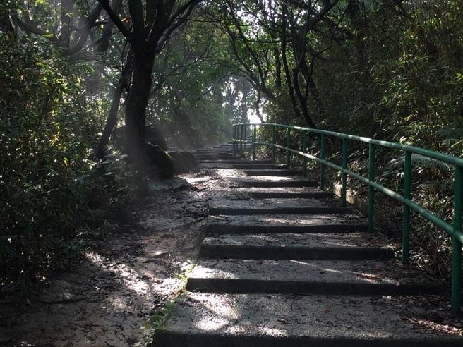 Hiking 17.1.16  Ng Fai Tin (2).JPG