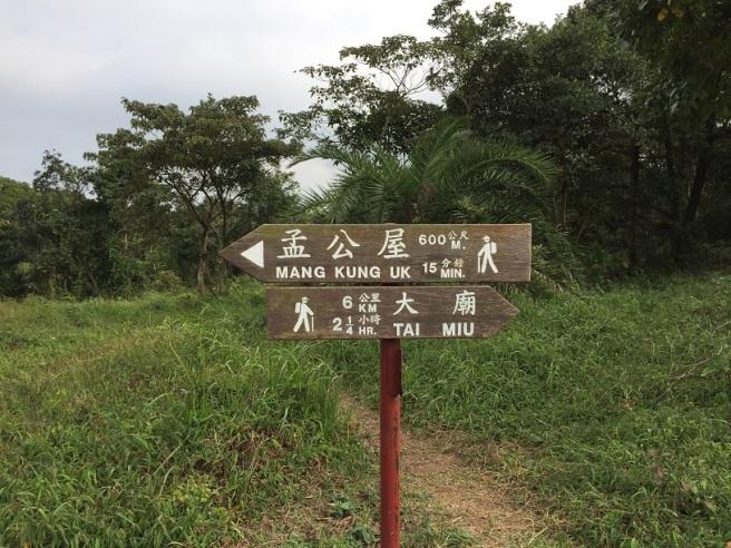 Hiking 17.1.16  Ng Fai Tin (6)