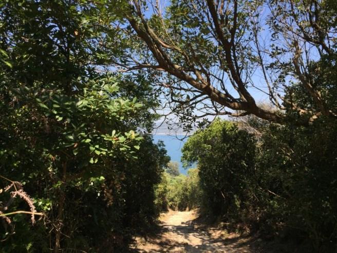 Hiking 2.2.16 Lung Ha Wan (8)