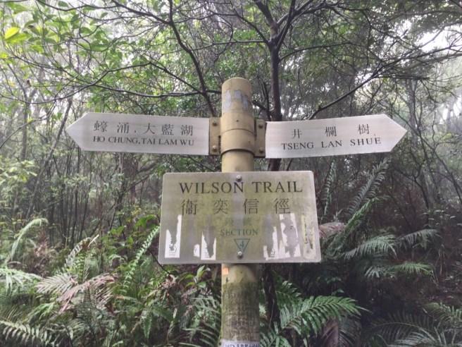 Hiking 19.3.16 Tung Yeung Shan (5).jpg