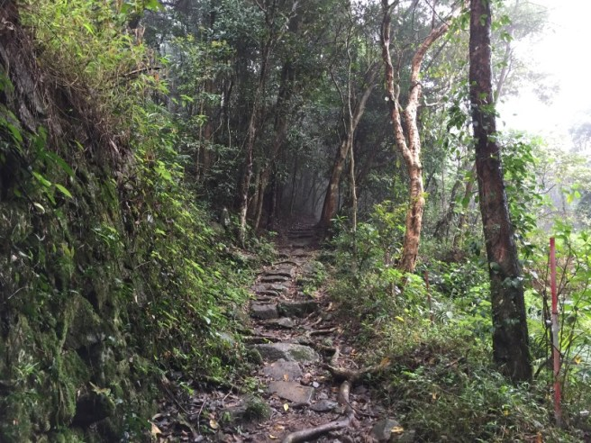 Hiking 19.3.16 Tung Yeung Shan (6).jpg