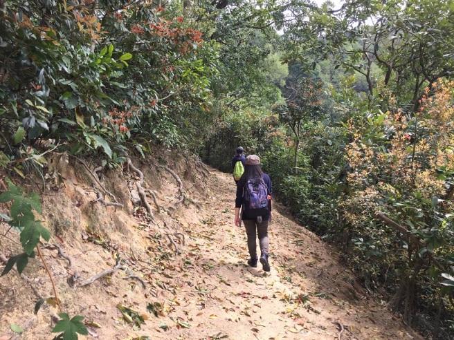 Hiking 2016.3.5.JPG