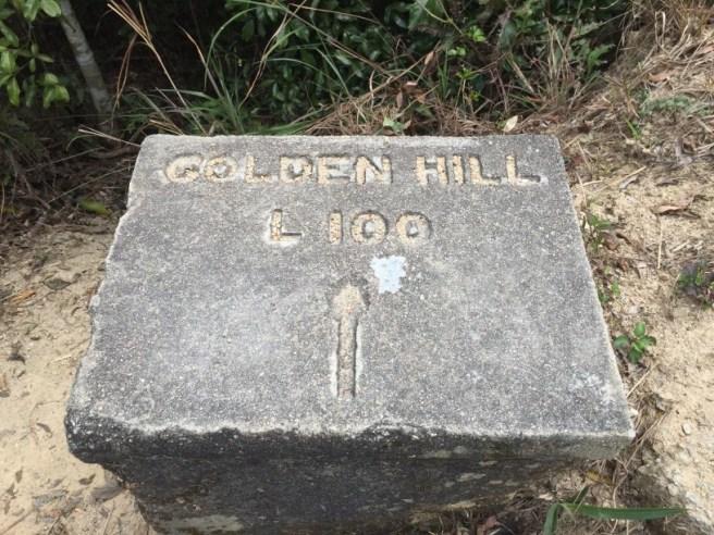 Hiking 5.3.16 Shing Mum (4)