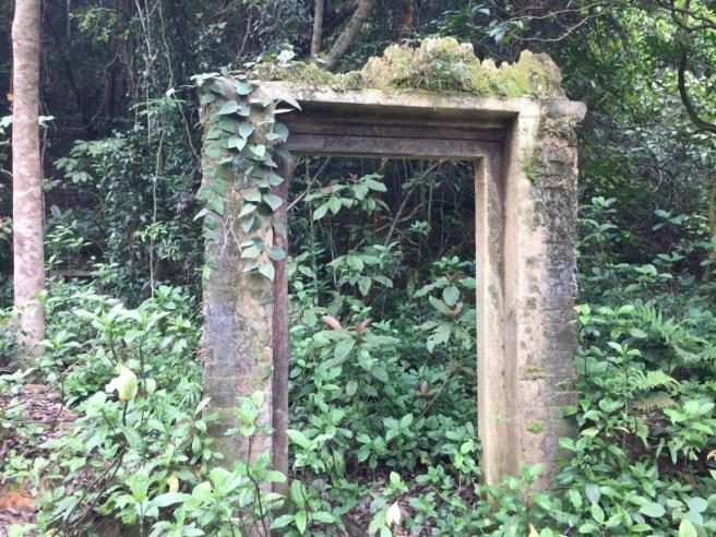 Hiking 2.4.16 Nam Chung (10)