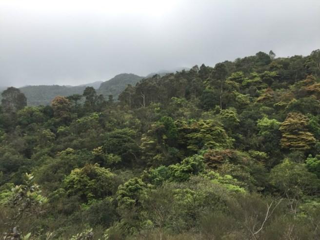 Hiking 2.4.16 Nam Chung (14)