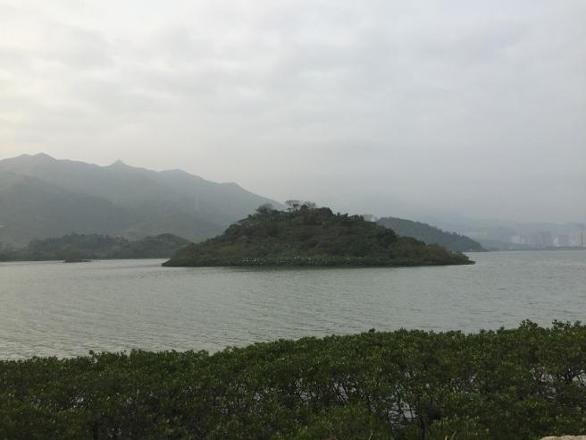 Hiking 2.4.16 Nam Chung (22).JPG
