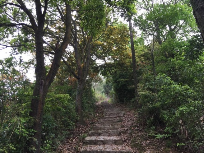 Hiking 2.4.16 Nam Chung (6)