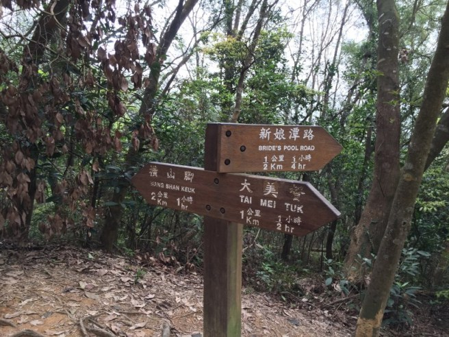 Hiking 2.4.16 Nam Chung (7)