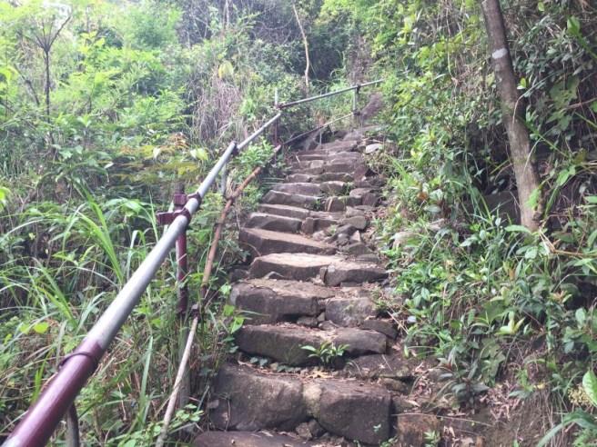 Hiking 24.4.16 Yau Tong (18).jpg