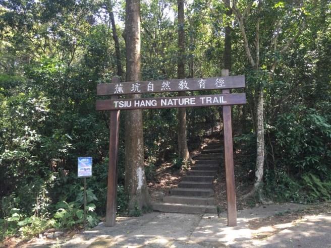 Hiking 4.4.16 Pak Ma Tsui
