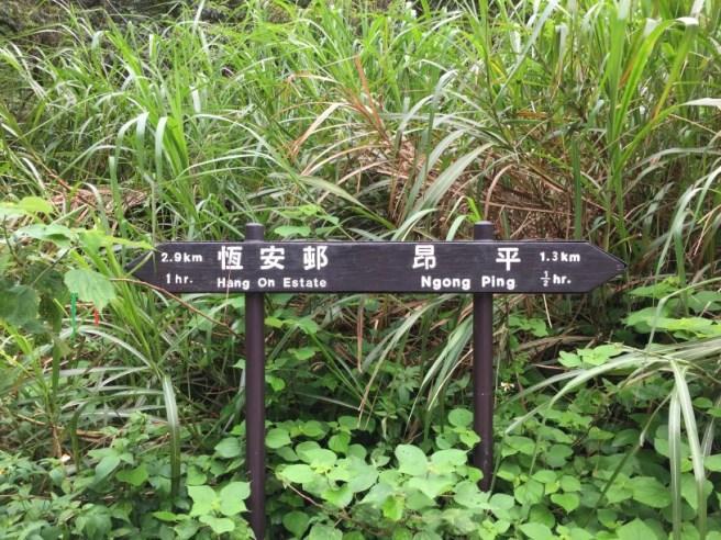 Hiking 7.4.16 Ngong Ping (2).jpg