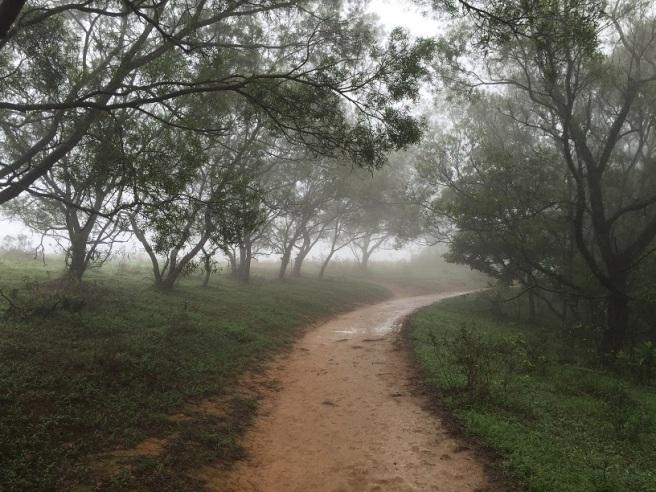 Hiking 7.4.16 Ngong Ping (6)