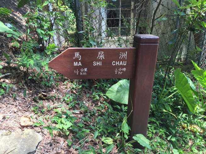 Hiking 2.6.16 Sam Mun Tsai (13)