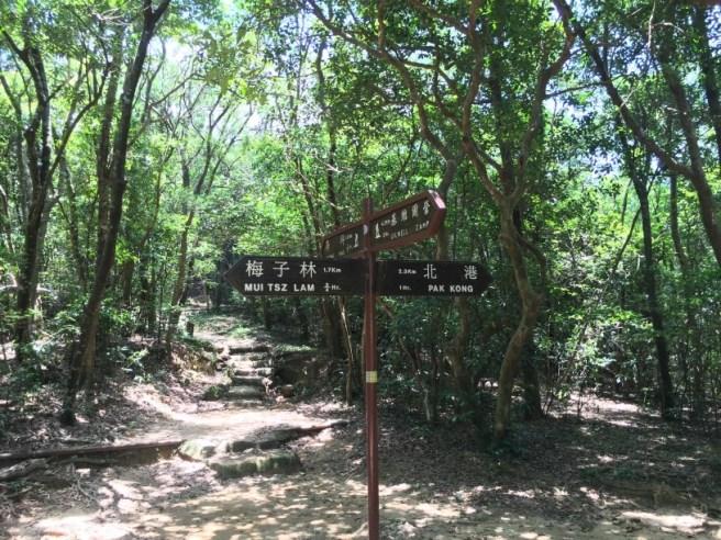 Hiking 25.6.16 Mau Ping (12)