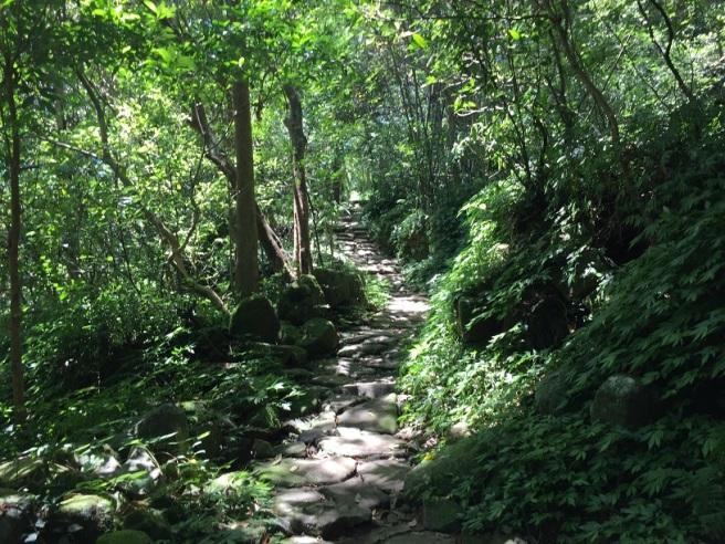 Hiking 25.6.16 Mau Ping (15)