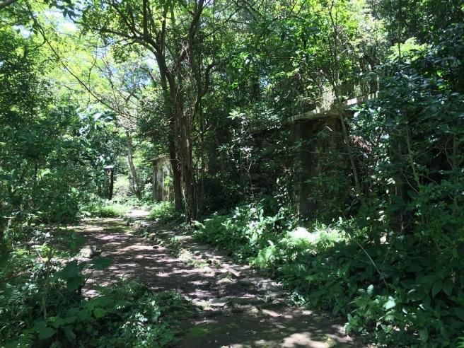 Hiking 25.6.16 Mau Ping (18)