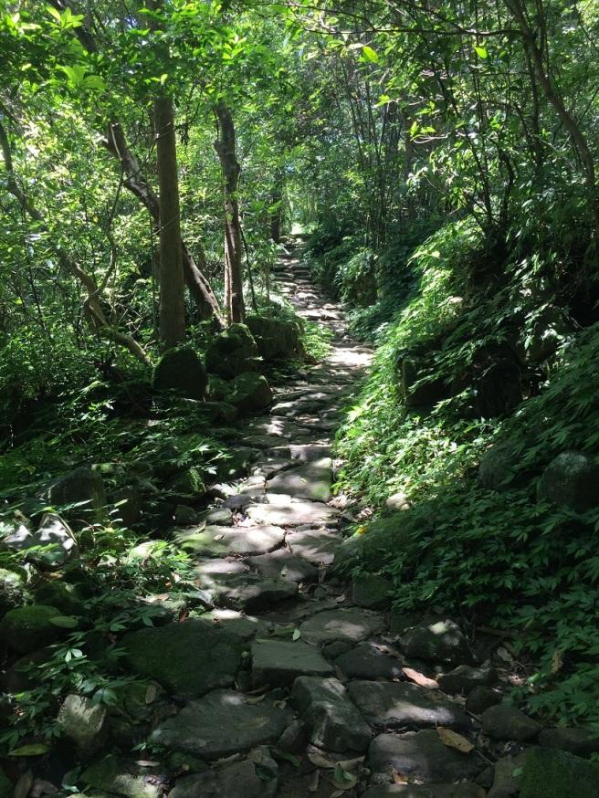 Hiking 25.6.16 Mau Ping (20).JPG