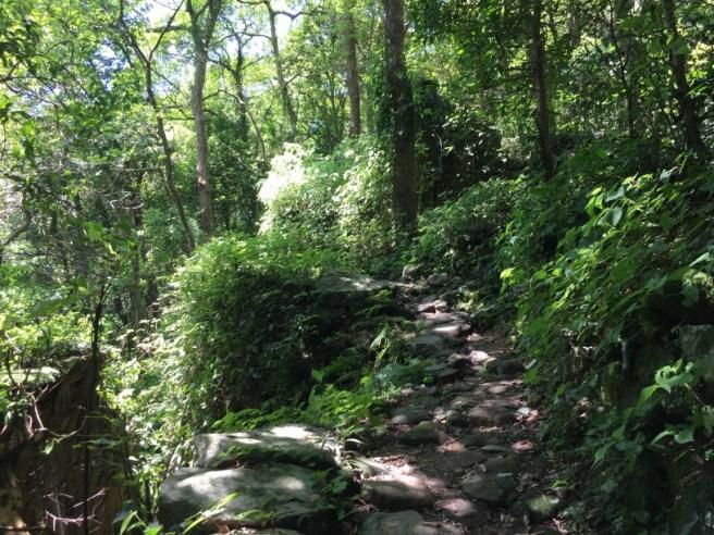 Hiking 25.6.16 Mau Ping (8).jpg