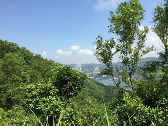 Hiking 4.6.16 Tsing Yi Nature Trail (15).JPG
