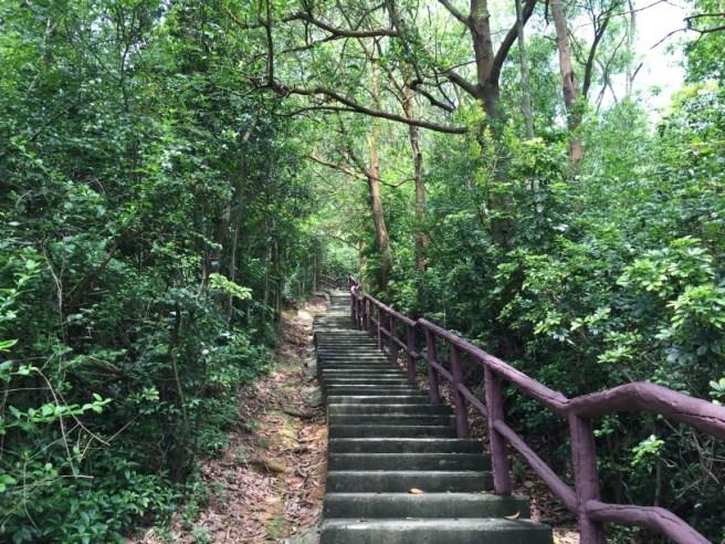 Hiking 4.6.16 Tsing Yi Nature Trail (5)