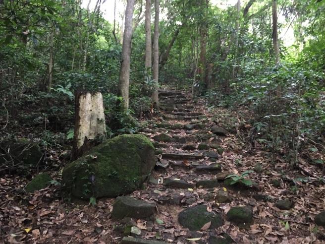 Hiking 6.18.16  Little Hawaii Trail (11)