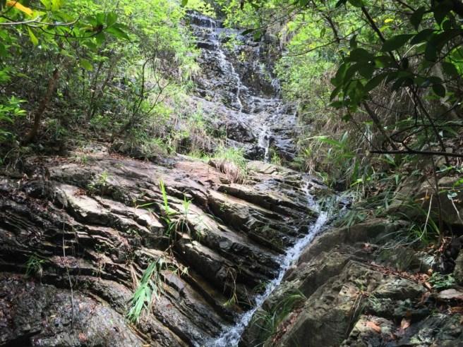Hiking 6.18.16  Little Hawaii Trail (3)