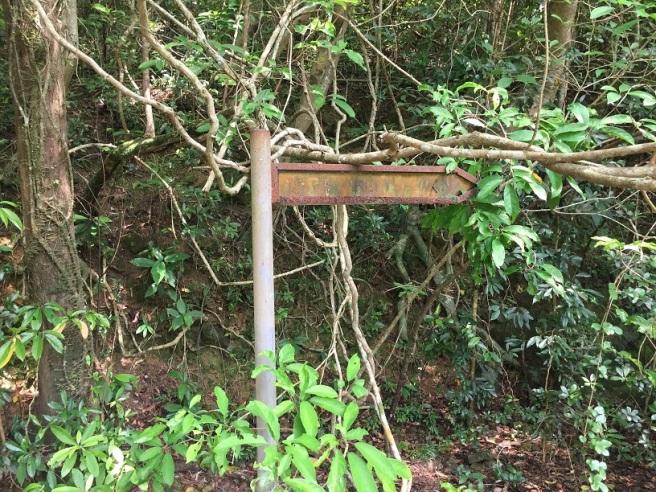 Hiking 10.7.16 Po Kwu Wan (11).JPG