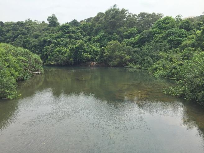 Hiking 10.7.16 Po Kwu Wan (13)