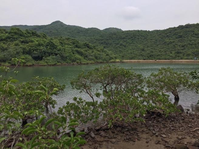 Hiking 10.7.16 Po Kwu Wan (16).JPG