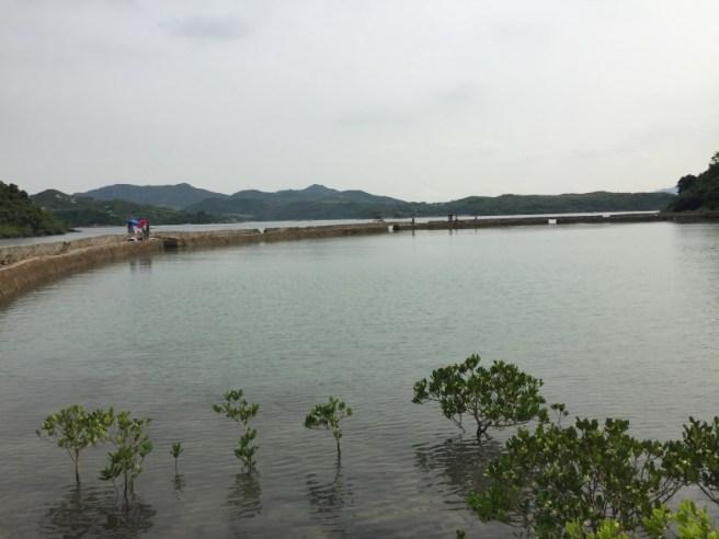 Hiking 10.7.16 Po Kwu Wan (5)
