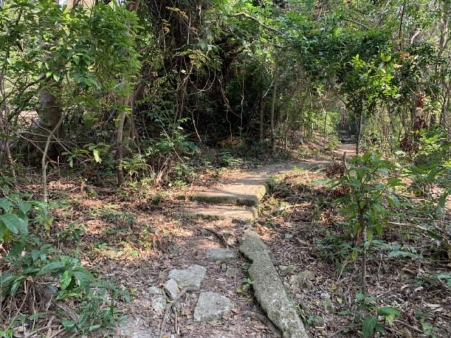 hiking 26.1.2019 po kwu wan (12)