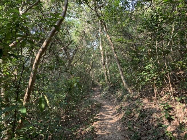 hiking 26.1.2019 po kwu wan (24)
