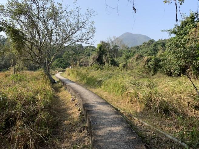 hiking 26.1.2019 po kwu wan (26)