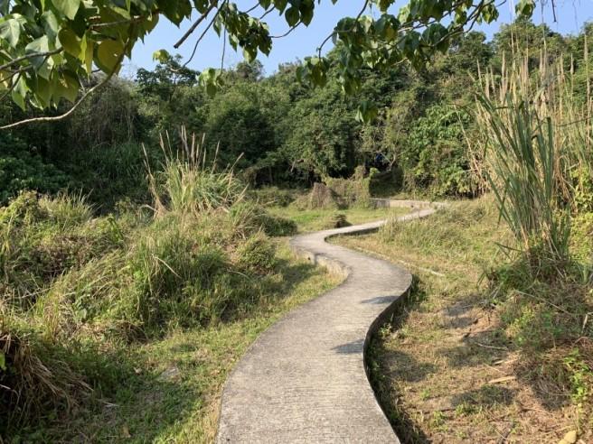 hiking 26.1.2019 po kwu wan (27)