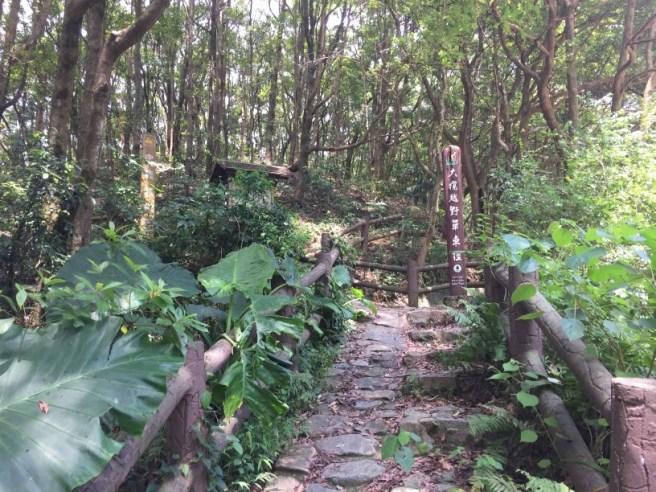 Hiking 20.8.16 Kap Lung (1)