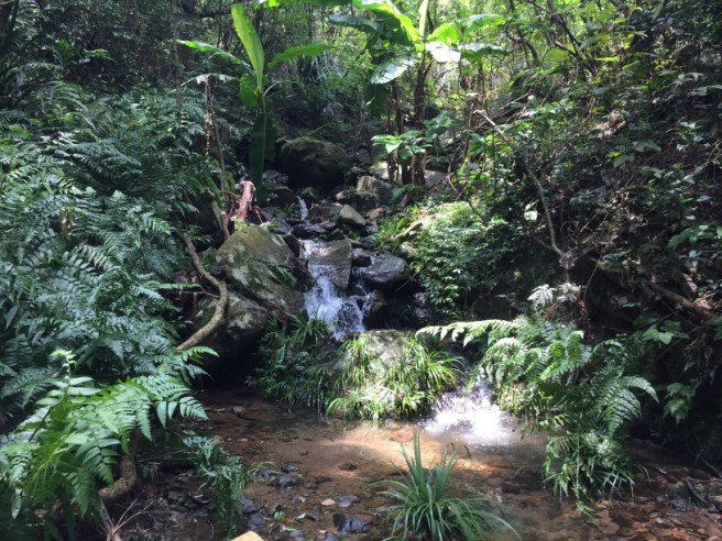 Hiking 20.8.16 Kap Lung (10)