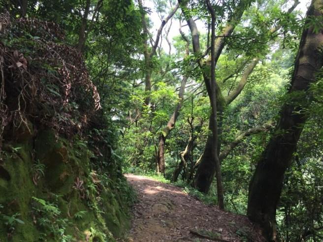 Hiking 20.8.16 Kap Lung (11)