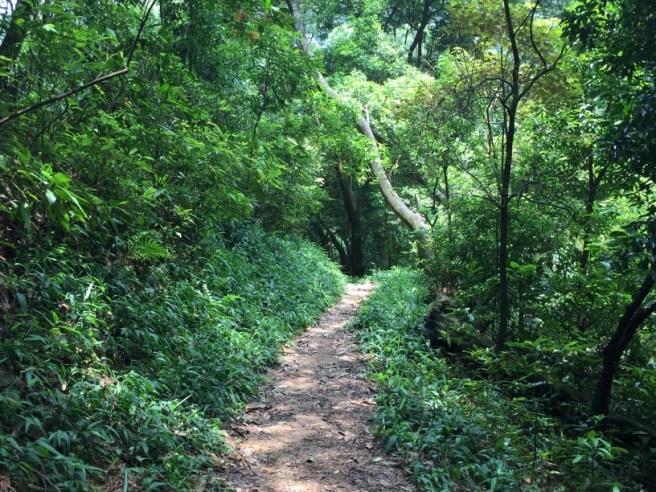 Hiking 20.8.16 Kap Lung (13)