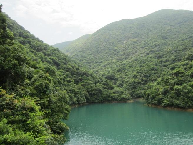 Hiking 27.8.16 Tai Tam (15)