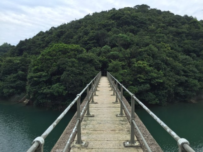 Hiking 27.8.16 Tai Tam (20)