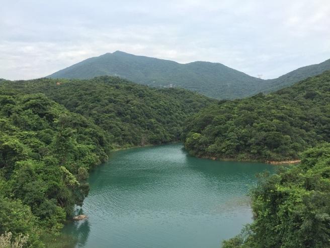 Hiking 27.8.16 Tai Tam (24)
