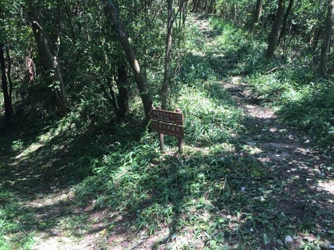 Hiking 6.8.16 Lo Yan Shan (18)