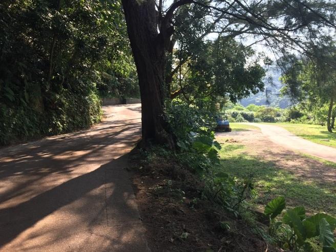 Hiking 6.8.16 Lo Yan Shan (23)