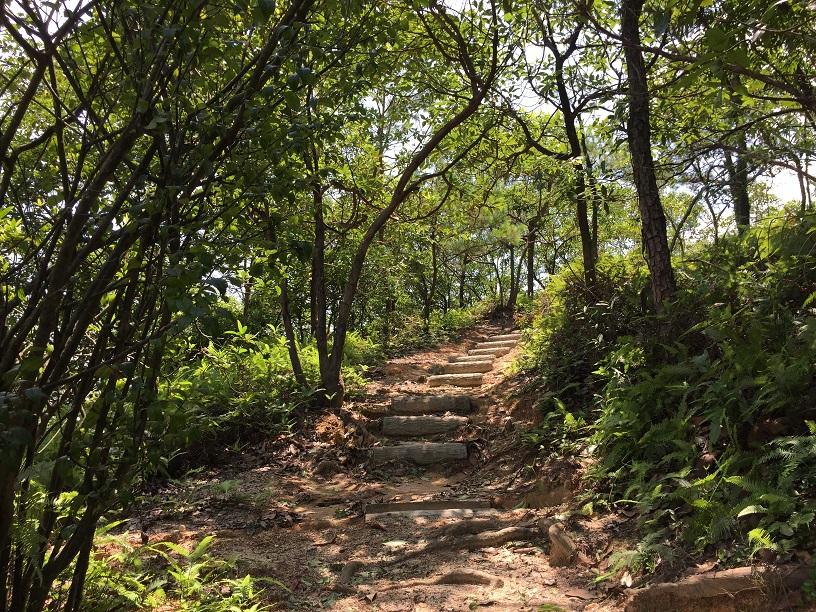 Hiking 6.8.16 Lo Yan Shan (6)