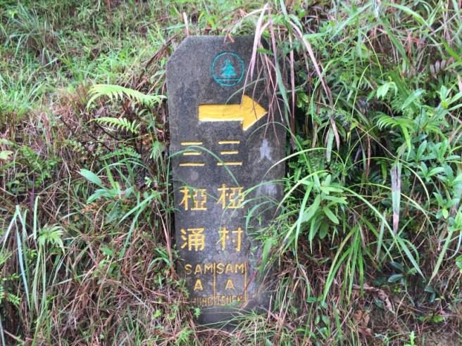hiking-11-9-16-lai-chi-wo-5