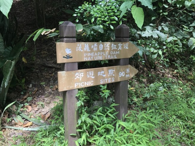 hiking-23-9-16-shing-mun-reservoir-3