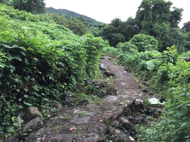 Hiking 3.9.16 Shui Long Wo (18)